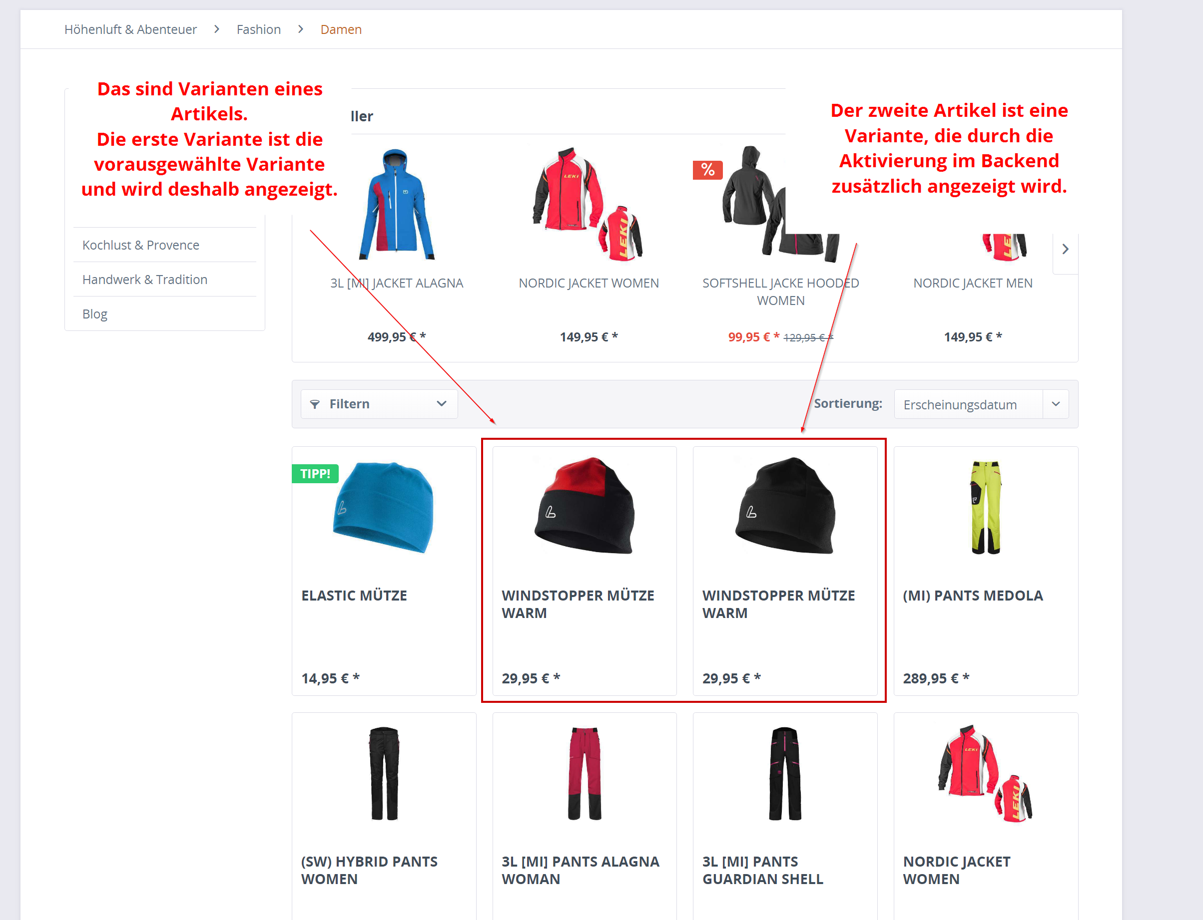 Varianten in Kategorie (Listing) und Suche anzeigen (SW5)